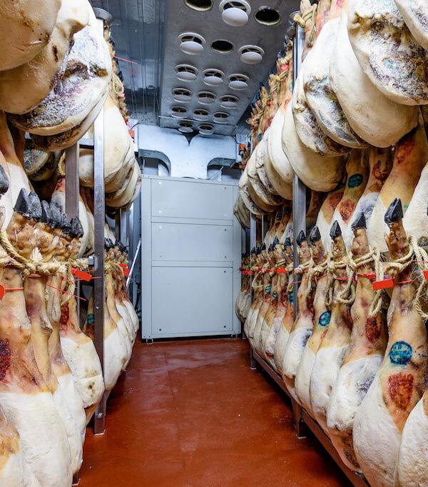 storage chamber and drying of Iberian ham